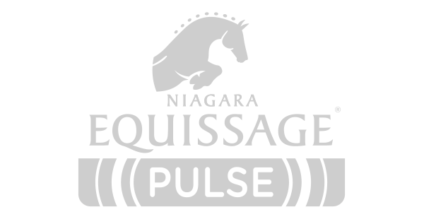 Equissage Pulse